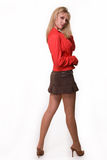 Woman in mini skirt Stock Photos