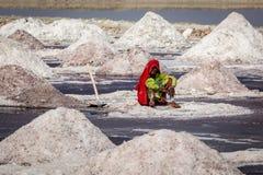 Woman mining salt at lake Sambhar, Rajasthan, India Royalty Free Stock Image