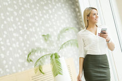 Woman with mobile phone in the office Stock Image