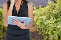 Woman model is holding a tablet computer against vineyard background stock photos