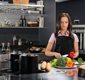 Woman on modern kitchen Stock Images