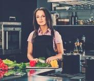 Woman on modern kitchen Royalty Free Stock Photo