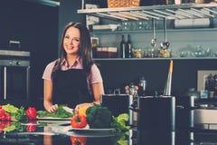 Woman on modern kitchen Stock Photo