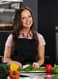 Woman on modern kitchen Royalty Free Stock Image