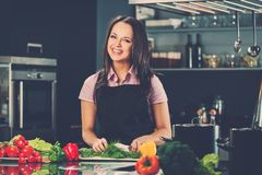 Woman on modern kitchen Stock Image