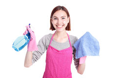 Woman mother cleaning Stock Photography