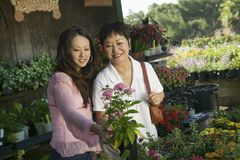 Woman with mother looking at flowers in plant nursery Royalty Free Stock Images