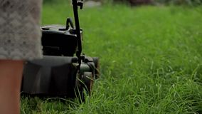 Woman mowing grass with a lawn mower stock video footage