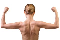 Woman muscular bac. K isolated on white background royalty free stock photos