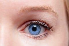 woman Nahaufnahme des blauen Auges? Stockfotografie