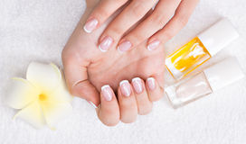 Woman in a nail salon receiving manicure Stock Photography