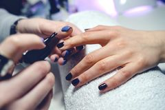 Woman in a nail salon receiving a manicure nail gel polish by a professional beautician stock photography