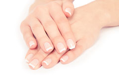 Woman nails. Care for sensuality woman nails Stock Image