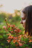 Woman in nature Stock Photos