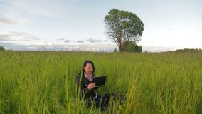 Woman on nature working on laptop overall plan. The camera moves. To the dolly on the right to the left stock video footage