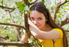 A woman is near the apple tree Stock Image
