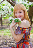 A woman is near the apple tree Royalty Free Stock Image