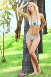 Woman near trunk of palmtree Stock Photography
