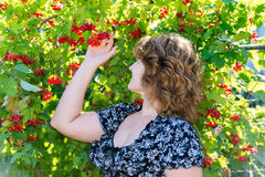 Woman near viburnum with mature berries Royalty Free Stock Photos