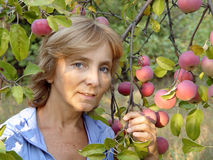 The woman next to apple. Portrait of a woman in the garden against the backdrop of beautiful apples Royalty Free Stock Photos