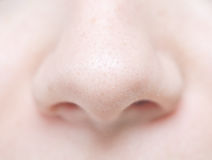 Woman nose Royalty Free Stock Photo