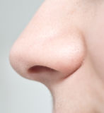 Woman nose Royalty Free Stock Photography