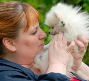 Woman Nose to Nose with a White Pomeranian Puppy Stock Image