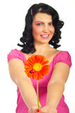 Woman offering you a flower with ladybug Stock Image