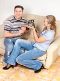 The woman offers a kitten to the man Stock Photos