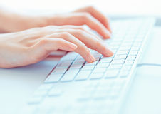 Woman Office Worker Typing On The Keyboard Stock Photo