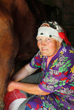 Woman old poor farmer milking cow Royalty Free Stock Photos