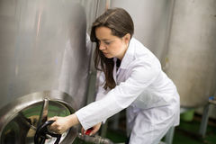 Woman at olive oil factory Stock Photos