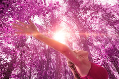 Woman with open arms in nature. Dreamscape sunset and trees.Happy and peace concept Stock Image
