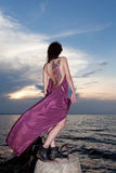 Woman in open dress with butterfly tattoo on her back. On sunset background royalty free stock photo