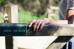 Woman opening gate in forest Stock Image