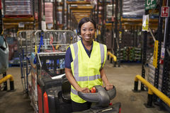 Woman operating a tow tractor in a warehouse looks to camera stock photography