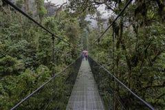 Suspension bridge in Monteverde Costa Rica royalty free stock photos