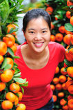 Woman and oranges tree Stock Photo