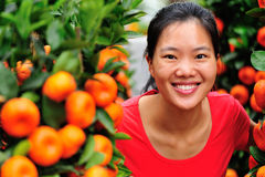 Woman and oranges tree Royalty Free Stock Images