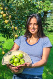 Woman in orchard holding hat filled with pears Royalty Free Stock Photos