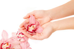 WOMAN WITH ORCHID BRANCH OVER HANDS Royalty Free Stock Photos