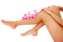 Woman with orchid branch over legs copyspace. Beautiful portrait of a young woman's legs with flowers in hand Stock Photography