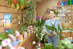 Woman with  orchid surrounded by different flowers Royalty Free Stock Image