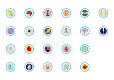 Organs and body icons and infographics stock illustration