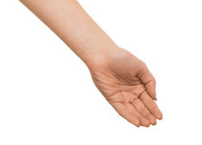 Woman outstretched open hand, cutout, top view Stock Photo