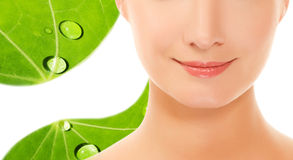 Woman ove green leaf Royalty Free Stock Photography