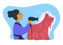 Woman owner of pet caring for animal with long fur stock illustration