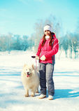 Woman owner and white Samoyed dog on leash walking in winter Stock Photography