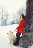Woman owner and white Samoyed dog near tree in the winter. Park Stock Images