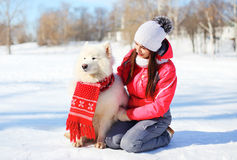 Woman owner with white Samoyed dog sitting on snow in winter Royalty Free Stock Images